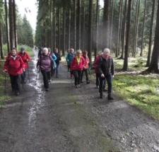 Wanderung_Mehltheurer_Forst