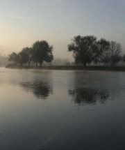 Bild17-Morgen_an_der_Saale