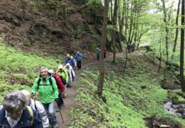 02-Wanderweg_um_Loket(Tour1)