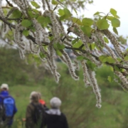 08-Natura_Trail