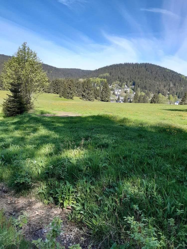 Bild08-Ausblick_von_den_Bergwiesen