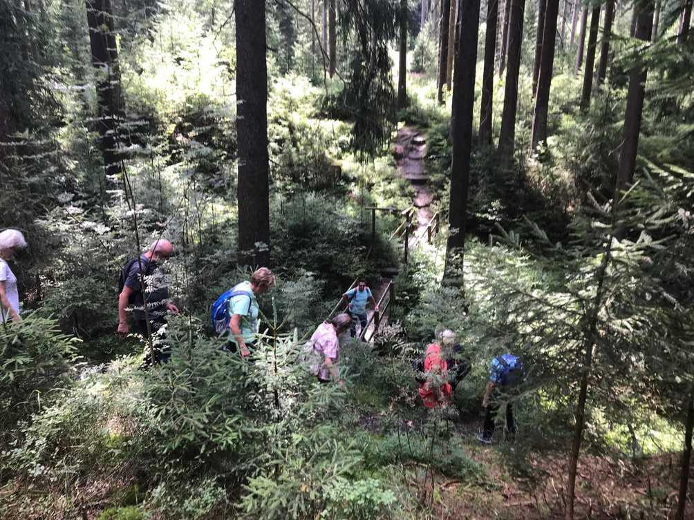 Bild06-Der_wildromatische_Weg_im_Saubachtal